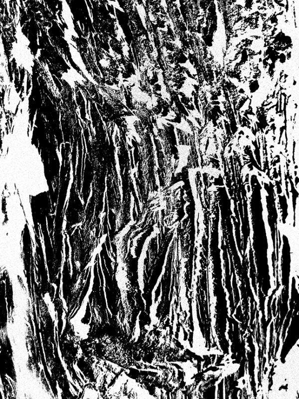 hold_to_trees_09_caro_m